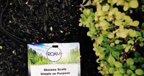 The ROAM Experience 2015 #HowWeRoam