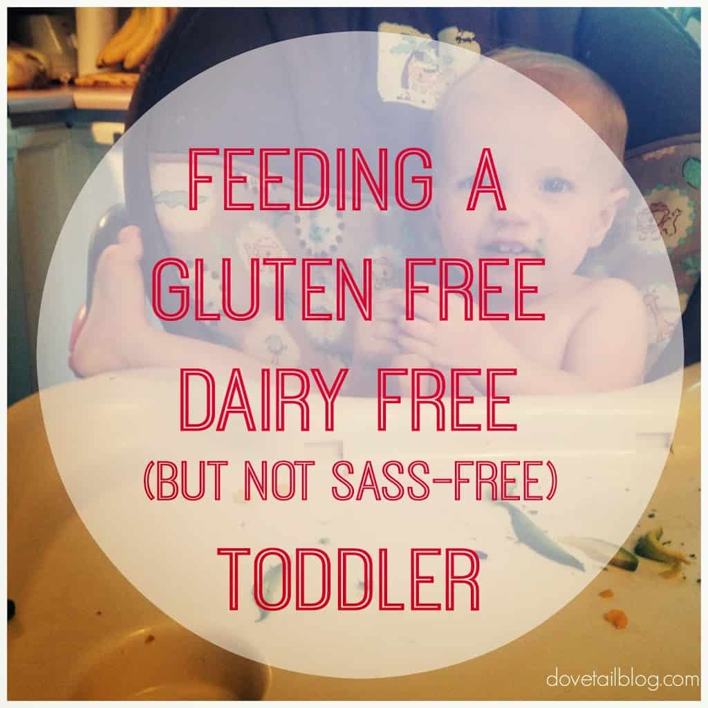 infant reflux, infant esophagitis, food sensitivities, dairy free, gluten free, toddler foods,