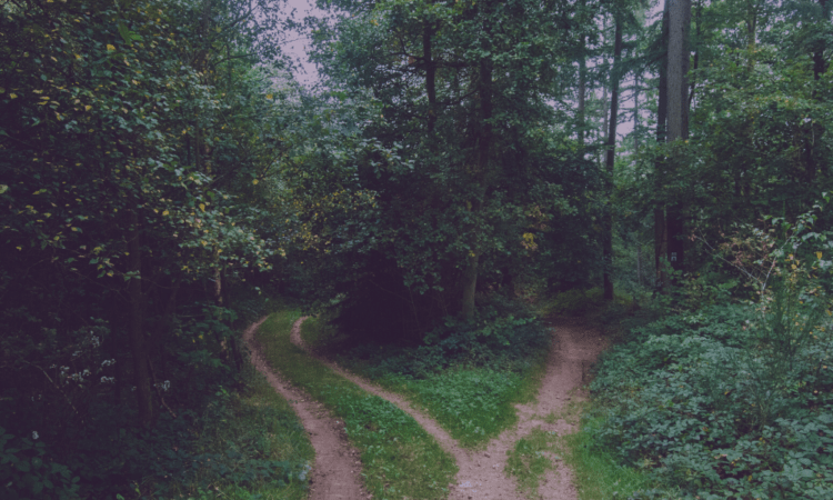two paths you can take when you are unhappy with your life